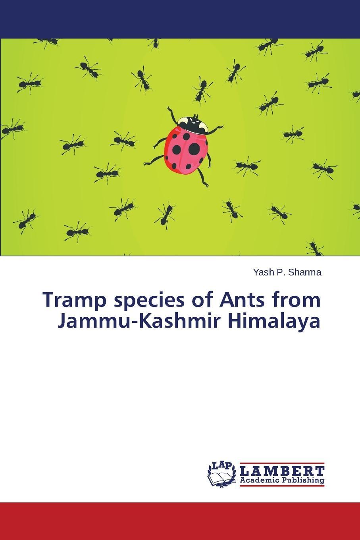 цены на Sharma Yash P. Tramp species of Ants from Jammu-Kashmir Himalaya  в интернет-магазинах