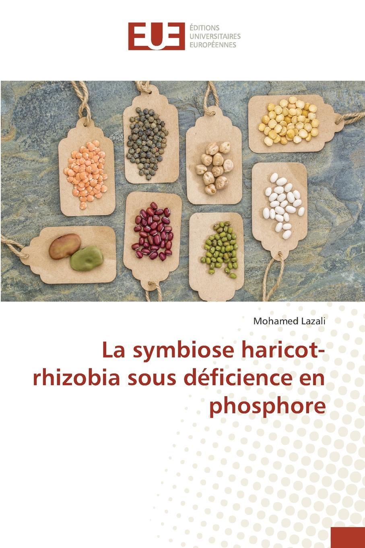 Lazali Mohamed La symbiose haricot-rhizobia sous deficience en phosphore thiery histoire et culture des lys suivie d un precis sur la culture des melons et sur la nature des sols ainsi que des engrais qui conviennent a chacun d eux avec l epoque des semis a faire mois par mois