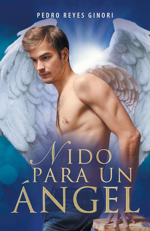 Pedro Reyes Ginori Nido para un angel hechizo colombiano o el angel del amor