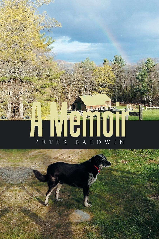 Peter Baldwin A Memoir the art of memoir