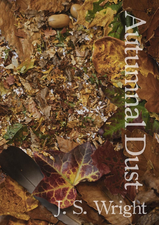 Julian Wright Autumnal Dust 50pcs lot ba08