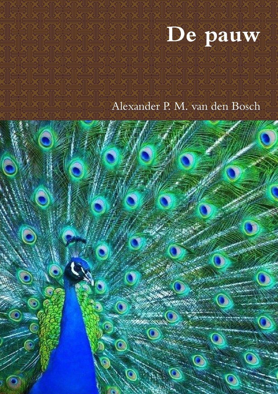 Alexander P. M. van den Bosch De pauw abraham herman blom de synoptische verhalen van den doop van jezus in de jordaan en van zijne verzoeking in de woestijn dutch edition