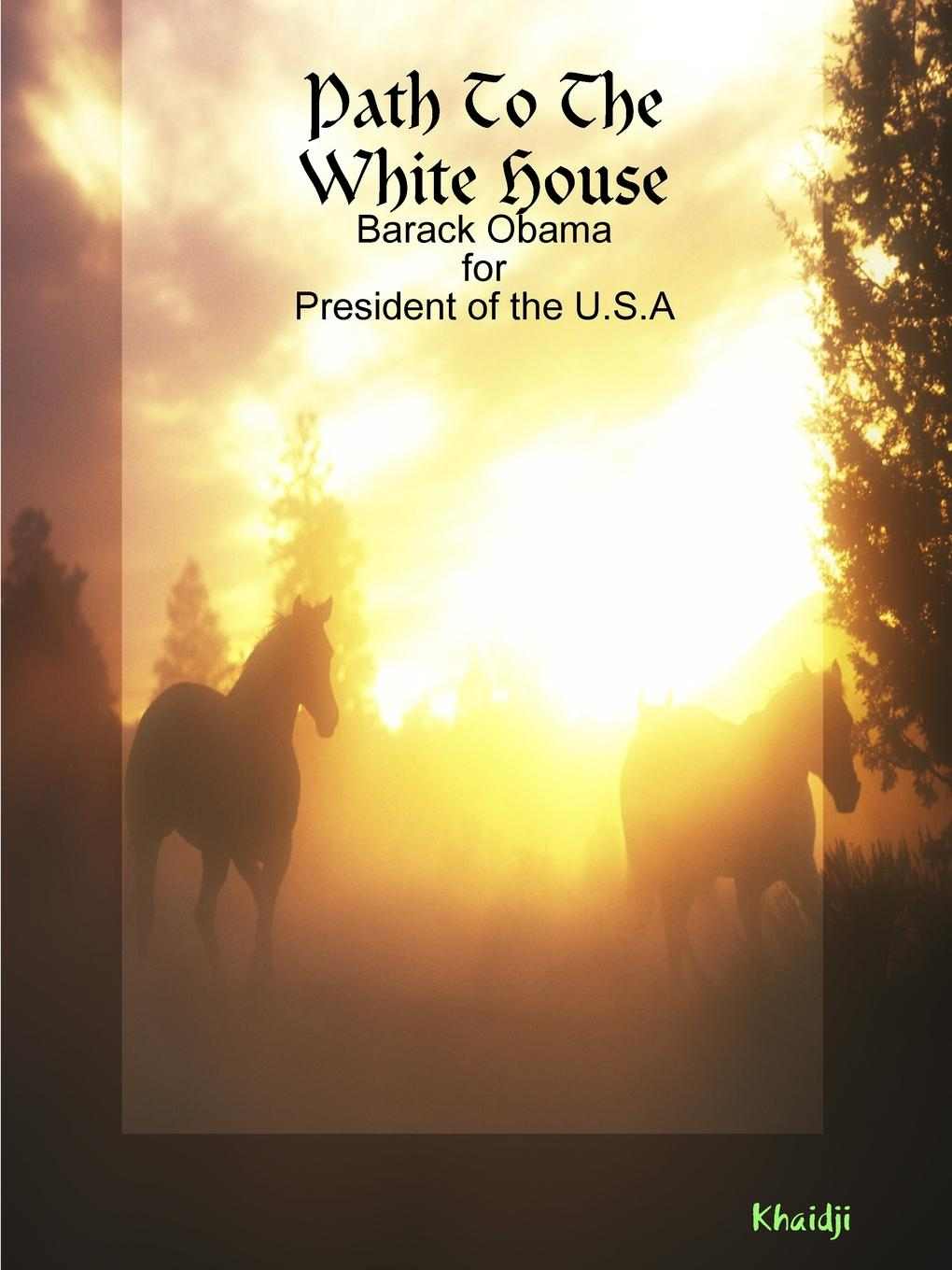 Khaidji Path To The White House the president is missing
