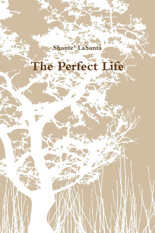 Shante' LaSanta The Perfect Life steel d a perfect life