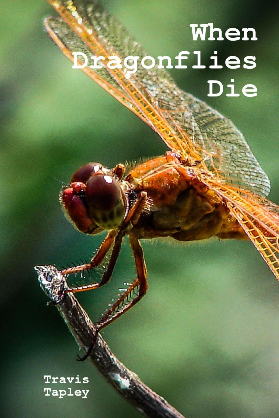 Travis Tapley When Dragonflies Die edison mike i have fun everywhere i go