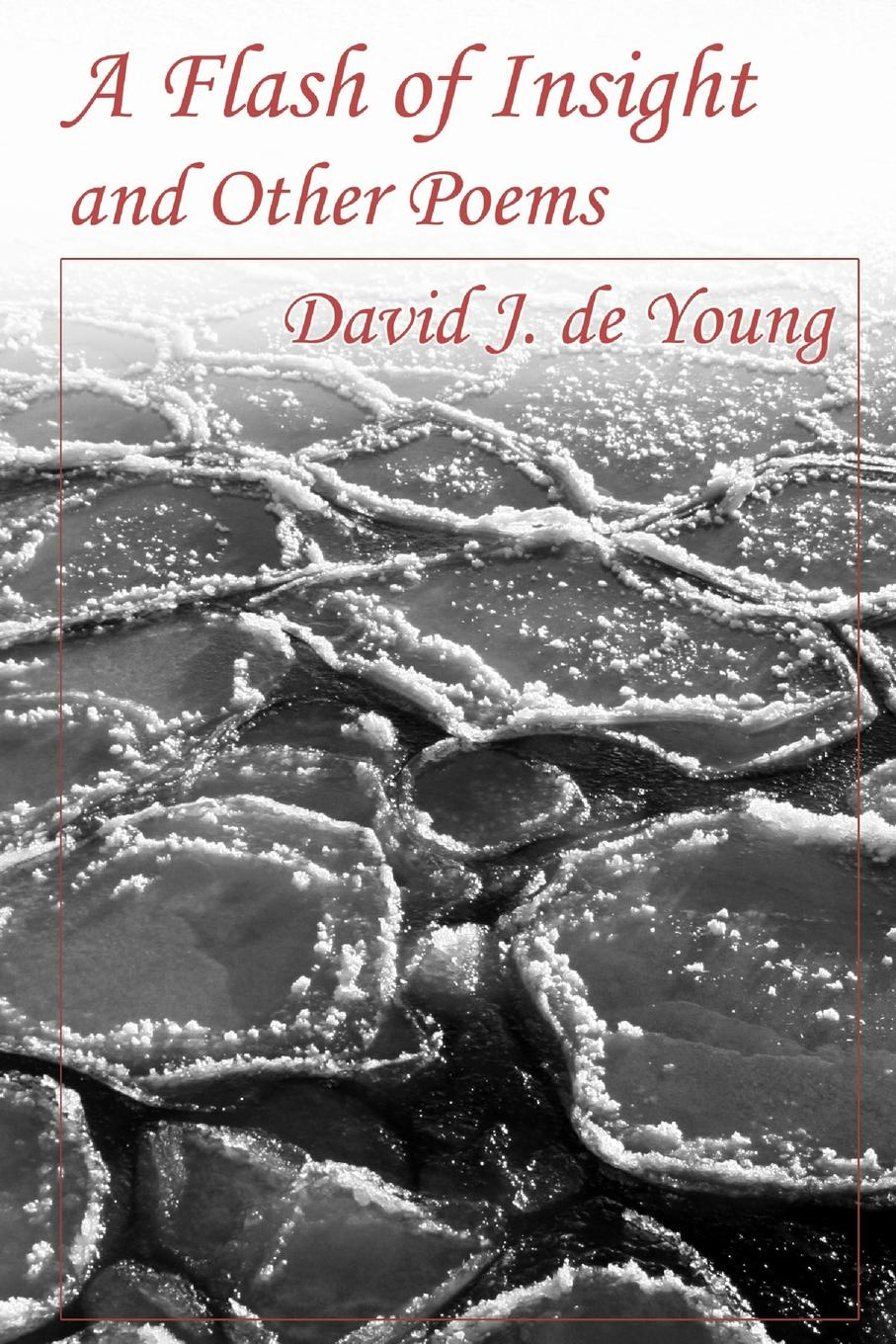David J de Young A Flash of Insight and Other Poems poems from the moor
