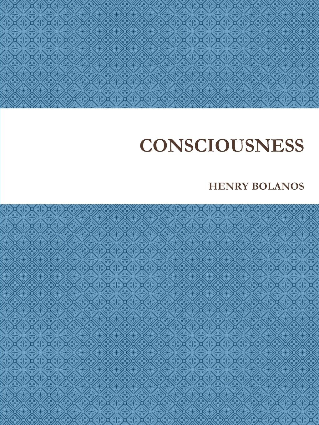 HENRY BOLANOS CONSCIOUSNESS ludwig dylan intentionality information and consciousness