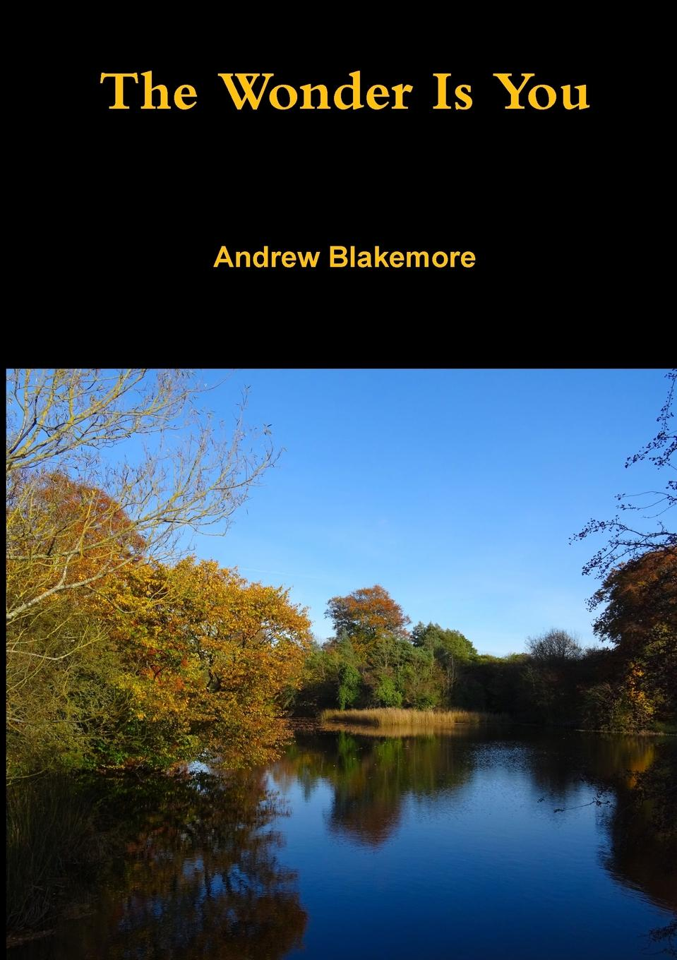ANDREW BLAKEMORE The Wonder Is You the children s book of poetry nature and weather poems