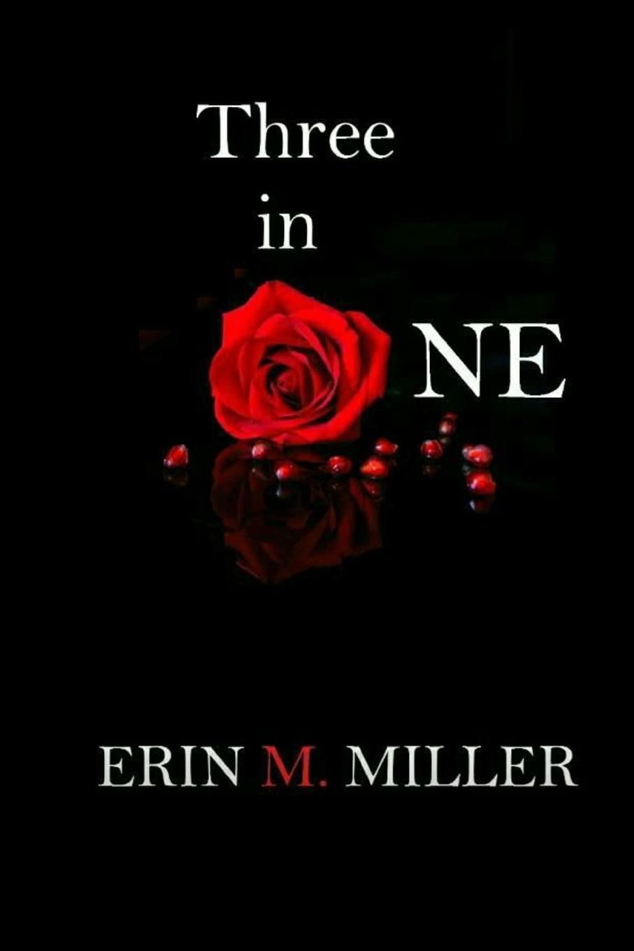 Erin Miller Three In One wertmark бра wertmark erin we346 02 101