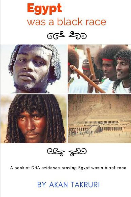 Akan Takruri egypt was a black race цены