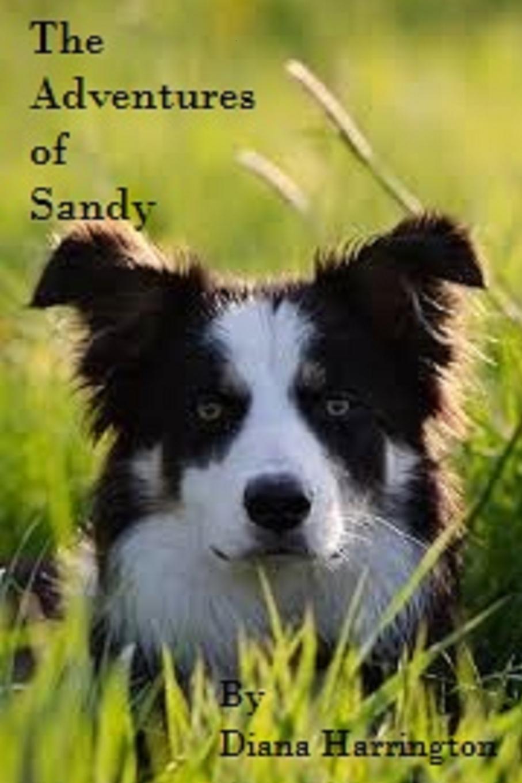 Diana Harrington Adventures of Sandy, Part I take that take that progress