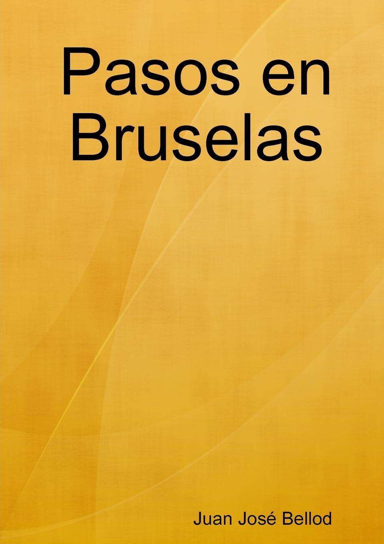 Juan José Bellod Pasos en Bruselas juan josé mosalini