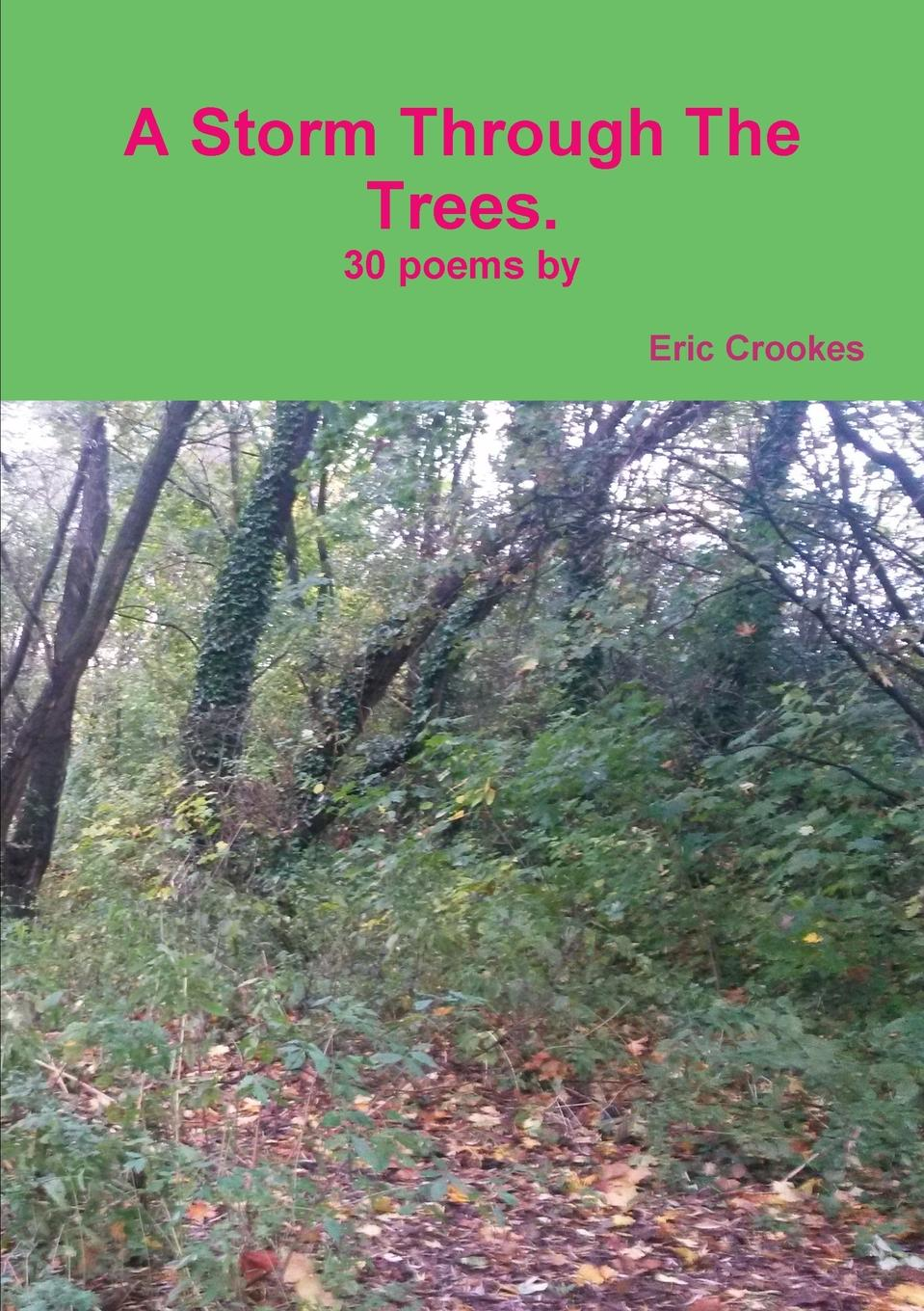 Eric Crookes A Storm Through The Trees luis estable thirty religious sonnets