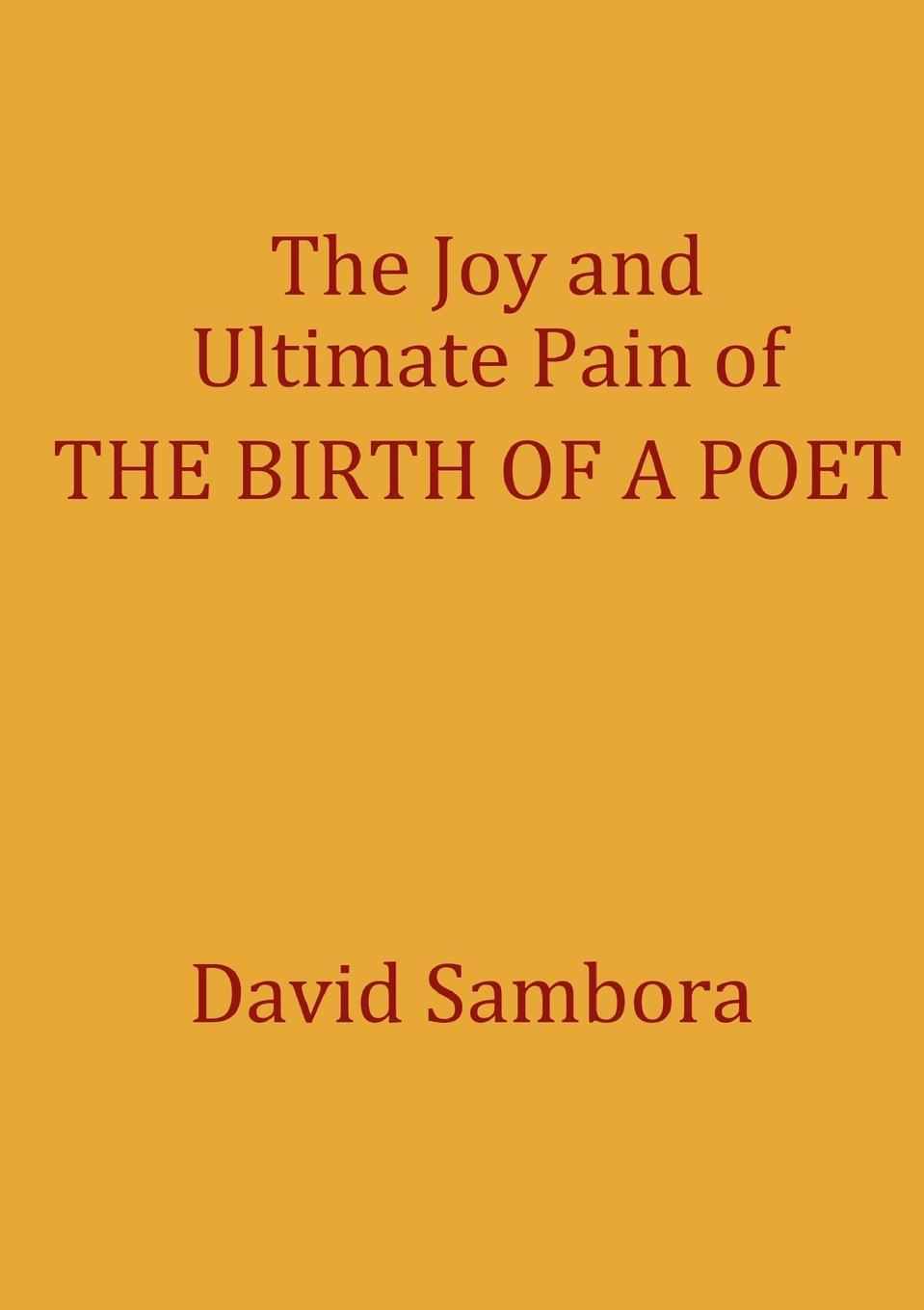 David Sambora The Joy and Ultimate Pain of THE BIRTH OF A POET sarah godfrey life works when a story of piecing happiness together for a successful life