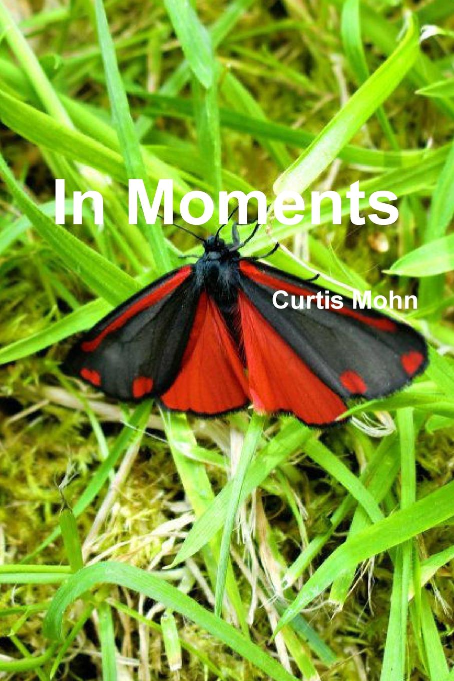 лучшая цена Curtis Mohn In Moments