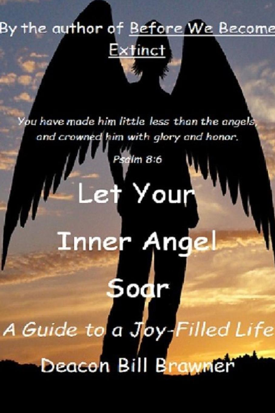 Deacon Bill Brawner Let Your Inner Angel Soar. A Guide to a Joy Filled Life michael burchell no excuses how you can turn any workplace into a great one
