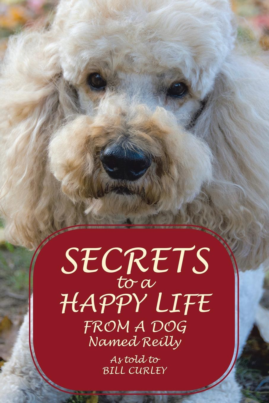 Bill Curley Secrets to a Happy Life from a Dog Named Reilly if only they could talk