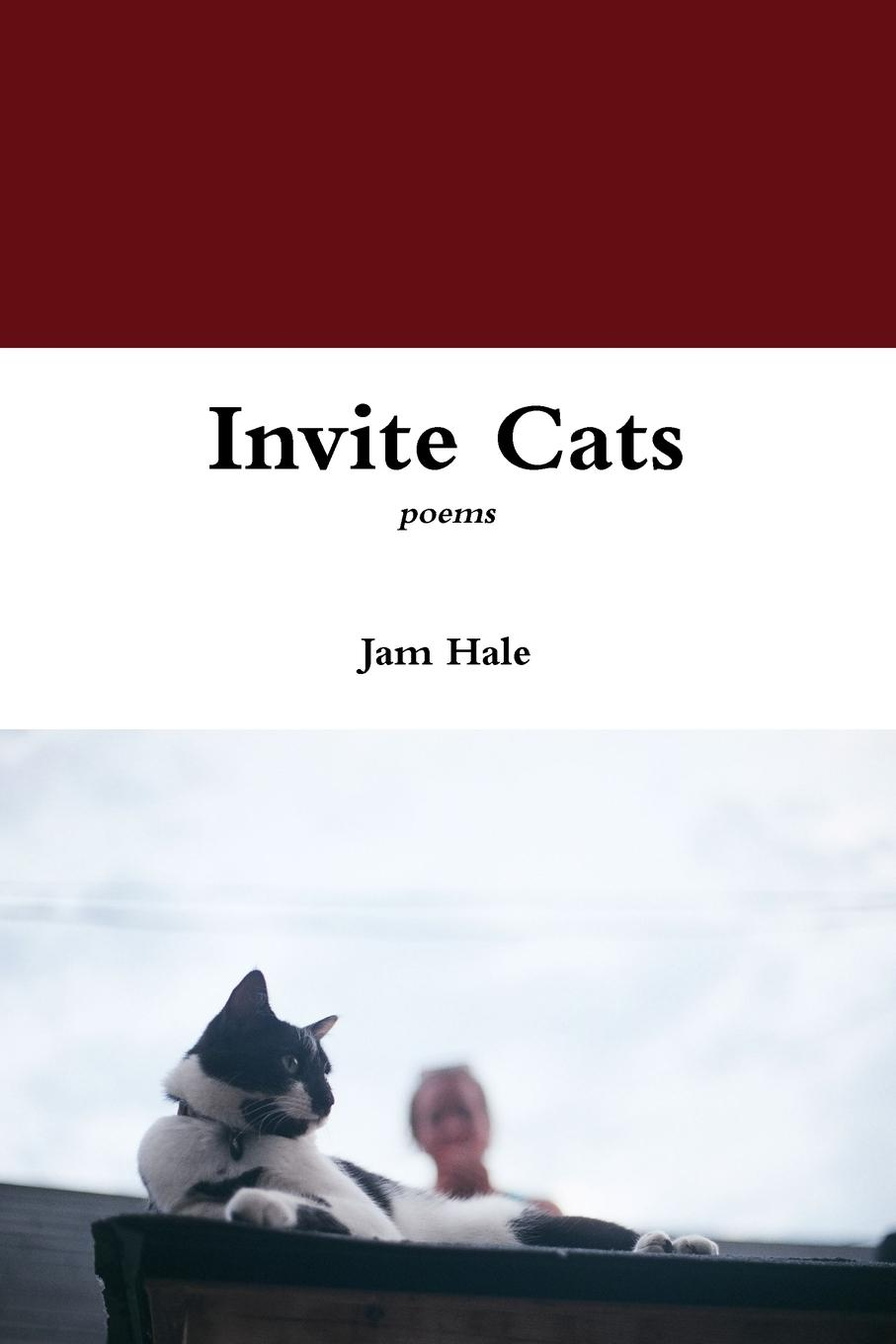 Jam Hale Invite Cats rachael hale 101 cataclysms for the love of cats