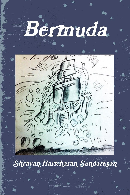 Shravan Haricharan Sundaresan Bermuda journey into imagination with figment