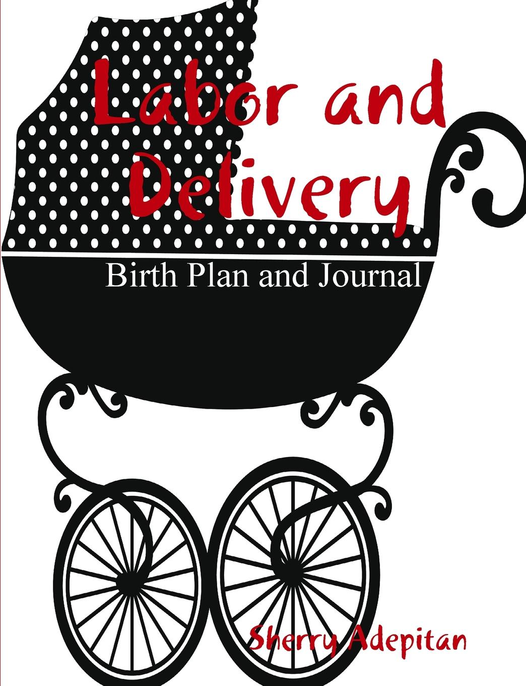 Sherry Adepitan Labor and Delivery. Birth Plan and Journal the big book of birth