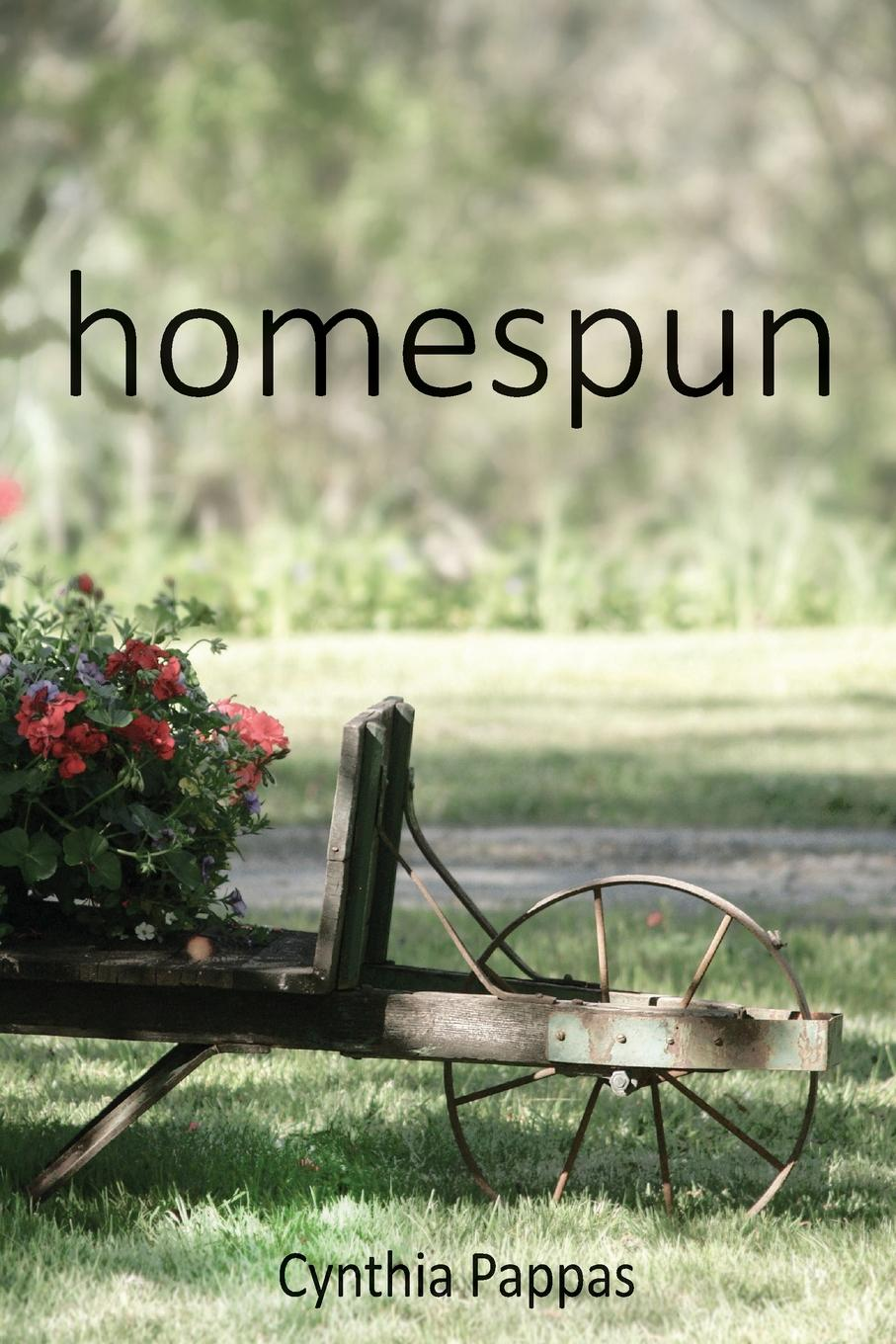 Cynthia Pappas homespun vigirdas mackevicius integral and measure from rather simple to rather complex isbn 9781119037385