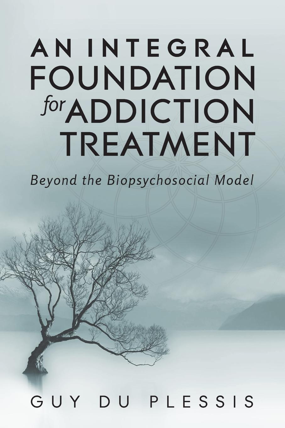 Guy du Plessis An Integral Foundation for Addiction Treatment. Beyond the Biopsychosocial Model paul davis addiction psychology and treatment