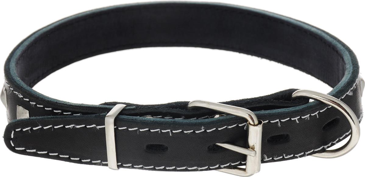 Ошейник для собак Каскад, двойной с украшениями и кольцом перед пряжкой, ширина 2,5 см, диаметр 39-46 см, цвет: черный