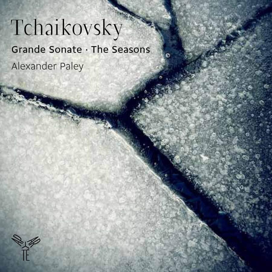 A. Paley. Tchaikovsky. Grande Sonate Op. 37. Les Saisons Op. 37B (2 CD) цена и фото