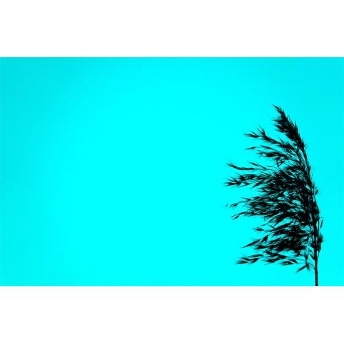 Постер Poster Art 30205070, МДФ30205070Современный постер. Корпус: Дерево. Размер: 30 х 20 см