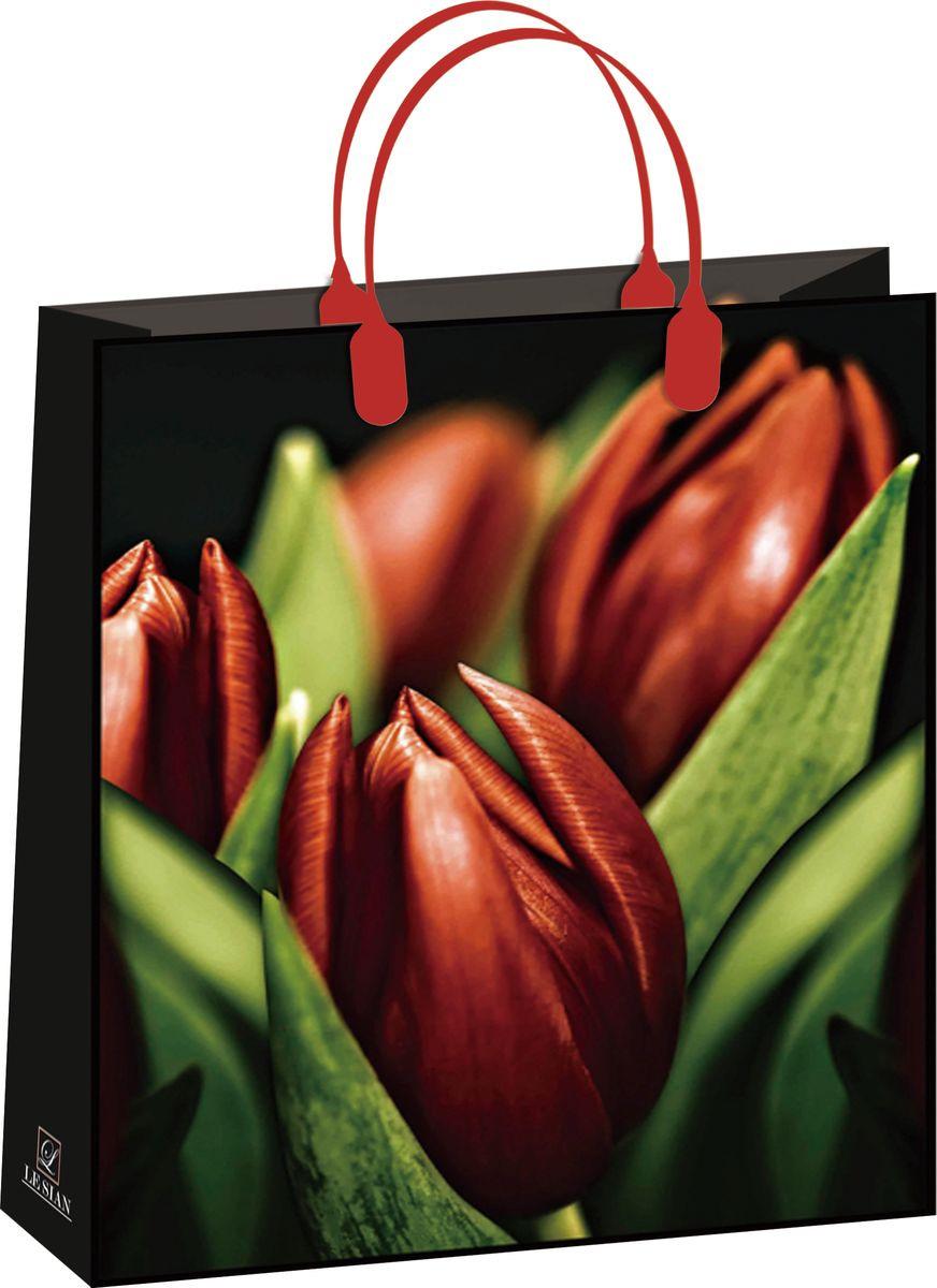 Подарочный пакет Bello, BAL 115, черный, красный, зеленый, 32 х 42 см