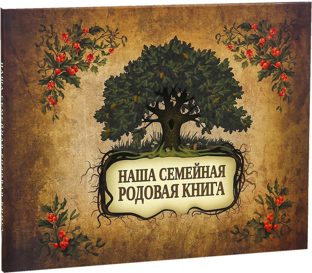Фотоальбом Наша семейная родовая книга, 4237828, мультиколор, 24 листа, 27,5 х 21,5 х 0,8 см