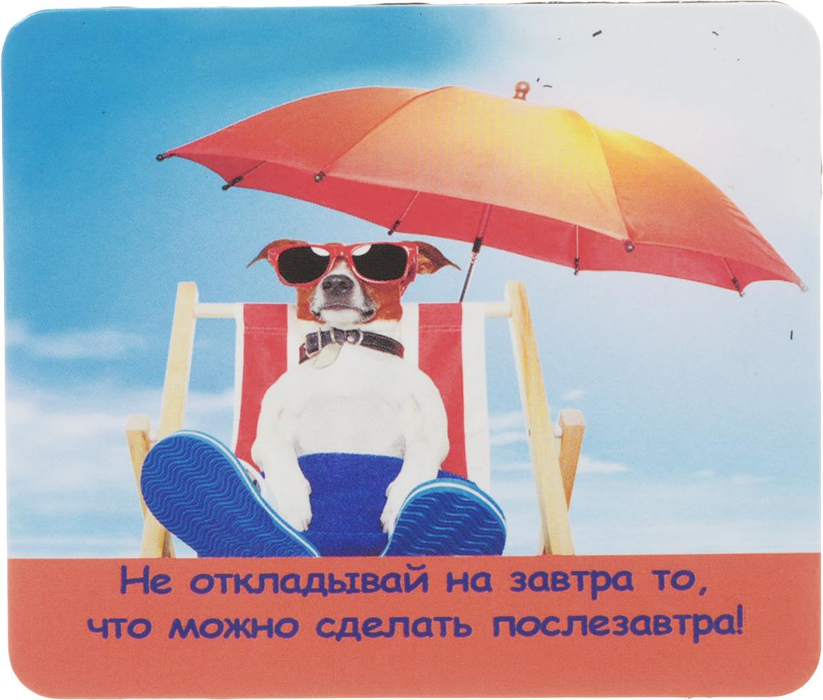 Магнит сувенирный Miland Не откладывай на завтра, Т-3273, мультиколор не откладывай жизнь на завтра мысли на пороге