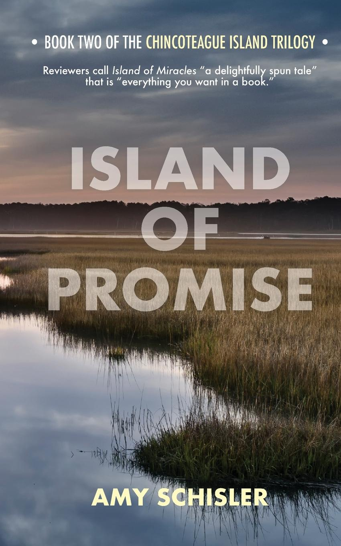 Amy Schisler Island of Promise jones c the way to a woman s heart