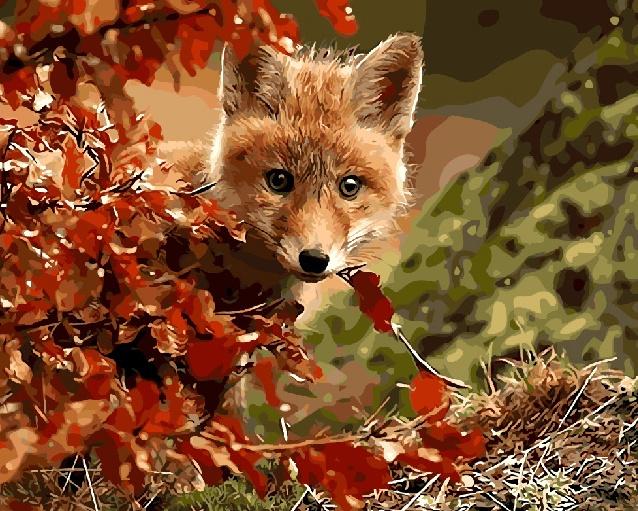 Картина по номерам ВанГогВоМне Лисья осень