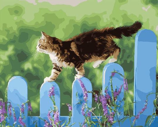 Картина по номерам ВанГогВоМне Котик на заборе картина по номерам белоснежка птичка на заборе 313 as
