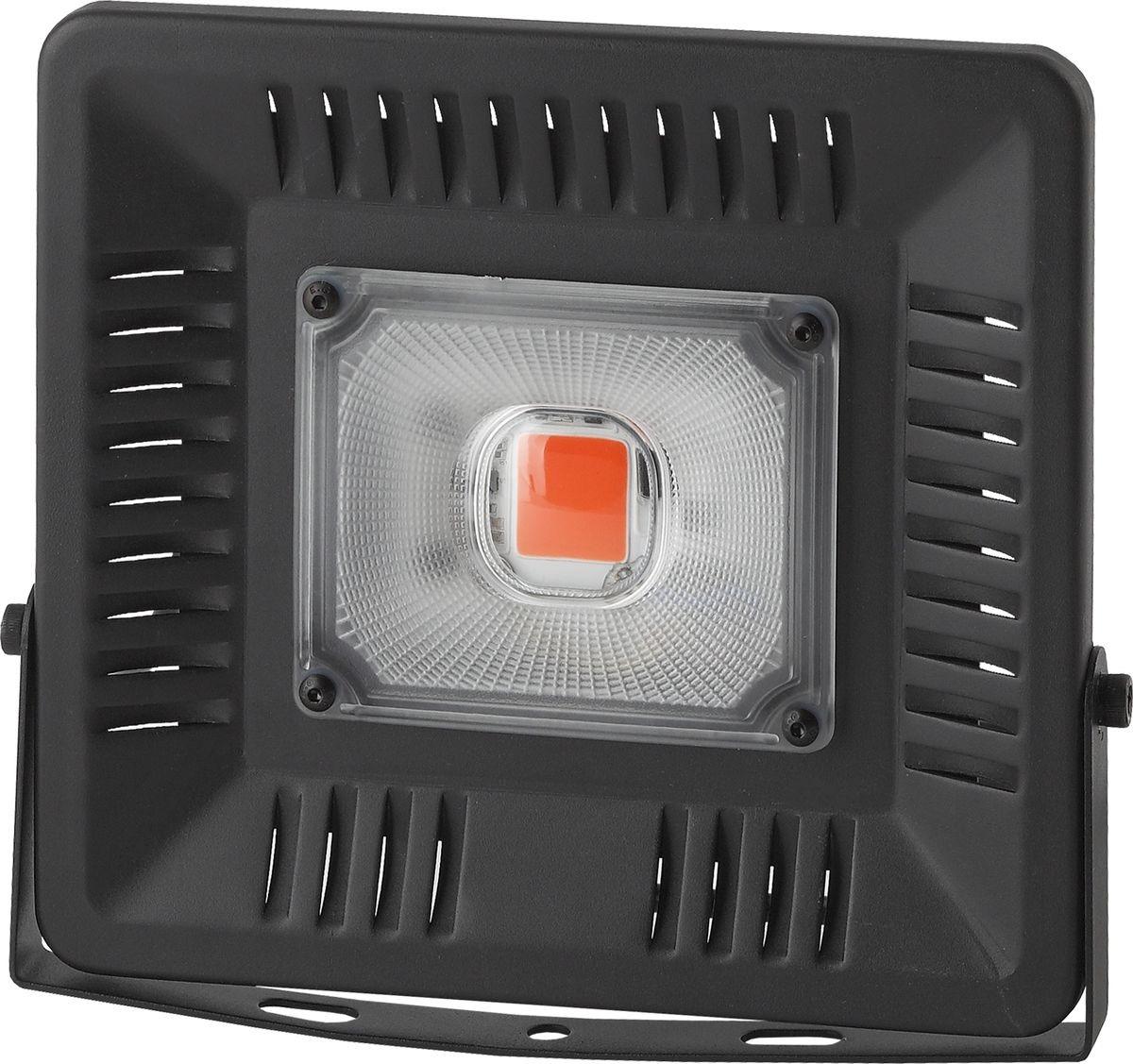 Прожектор ЭРА Fito-50W-LED BLUERED, 50 Вт прожектор эра 30 вт
