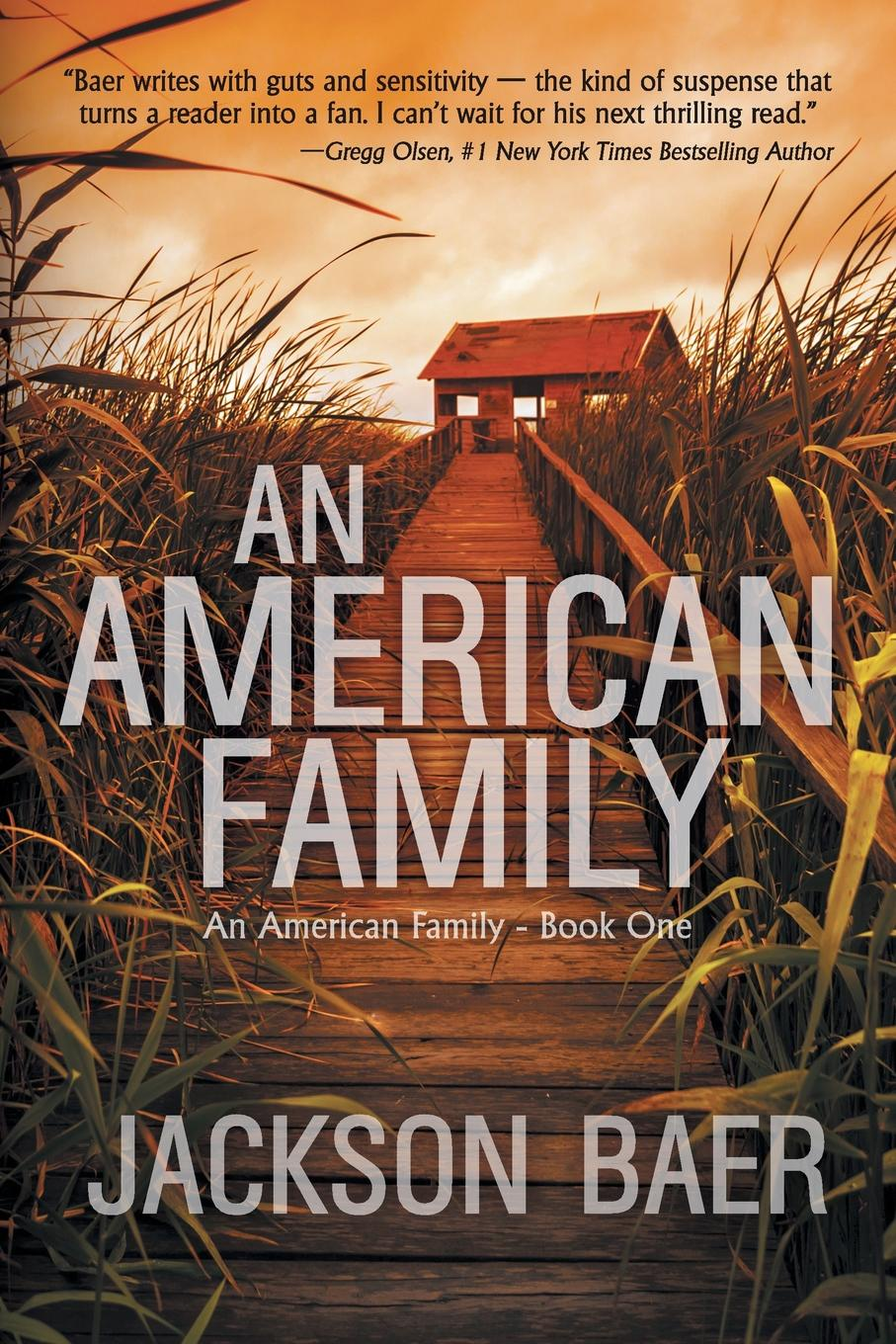Jackson Baer An American Family. A Gripping Contemporary Suspense Drama american wife