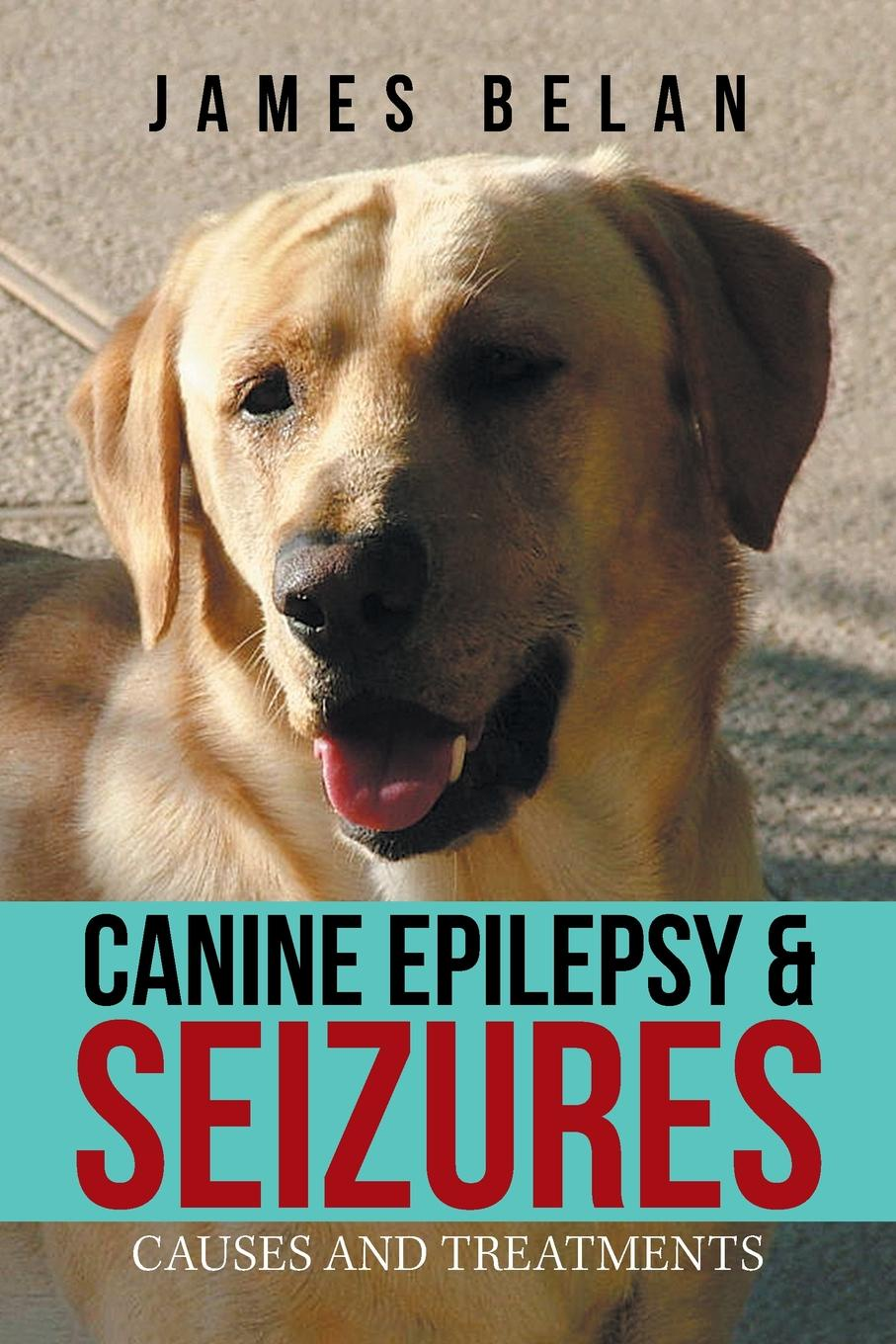James Belan Canine Epilepsy . Seizures. Causes and Treatments