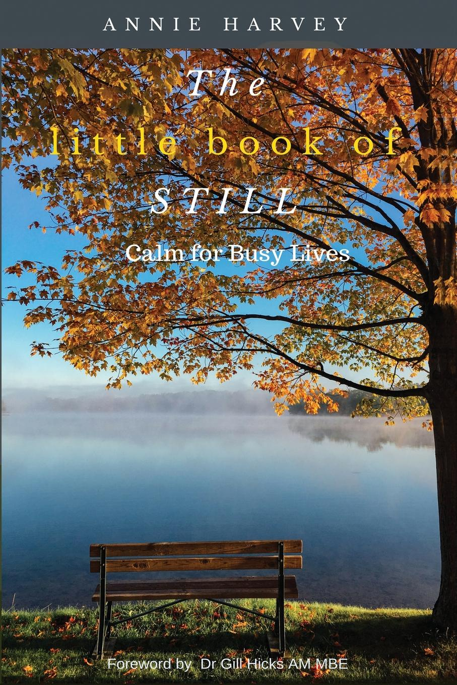 Annie Harvey The Little Book of Still. Calm for Busy Lives good little book the