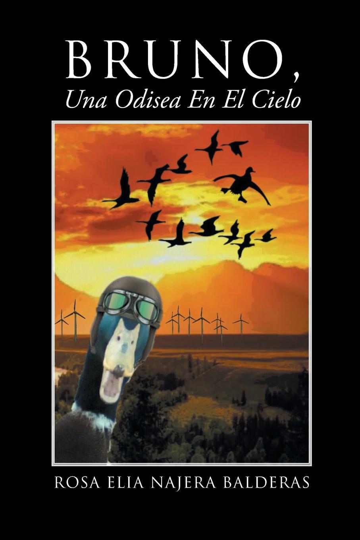 цена Rosa Elia Najera Balderas Bruno Una Odisea En El Cielo в интернет-магазинах