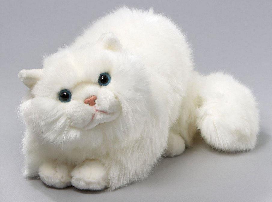 Картинки плюшевых котов