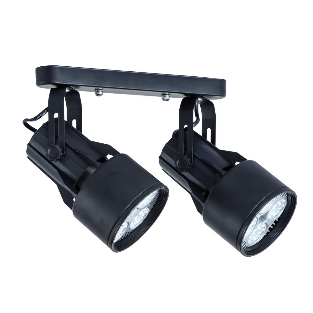 Настенно-потолочный светильник Arte Lamp A6252PL-2BK, черный цена 2017