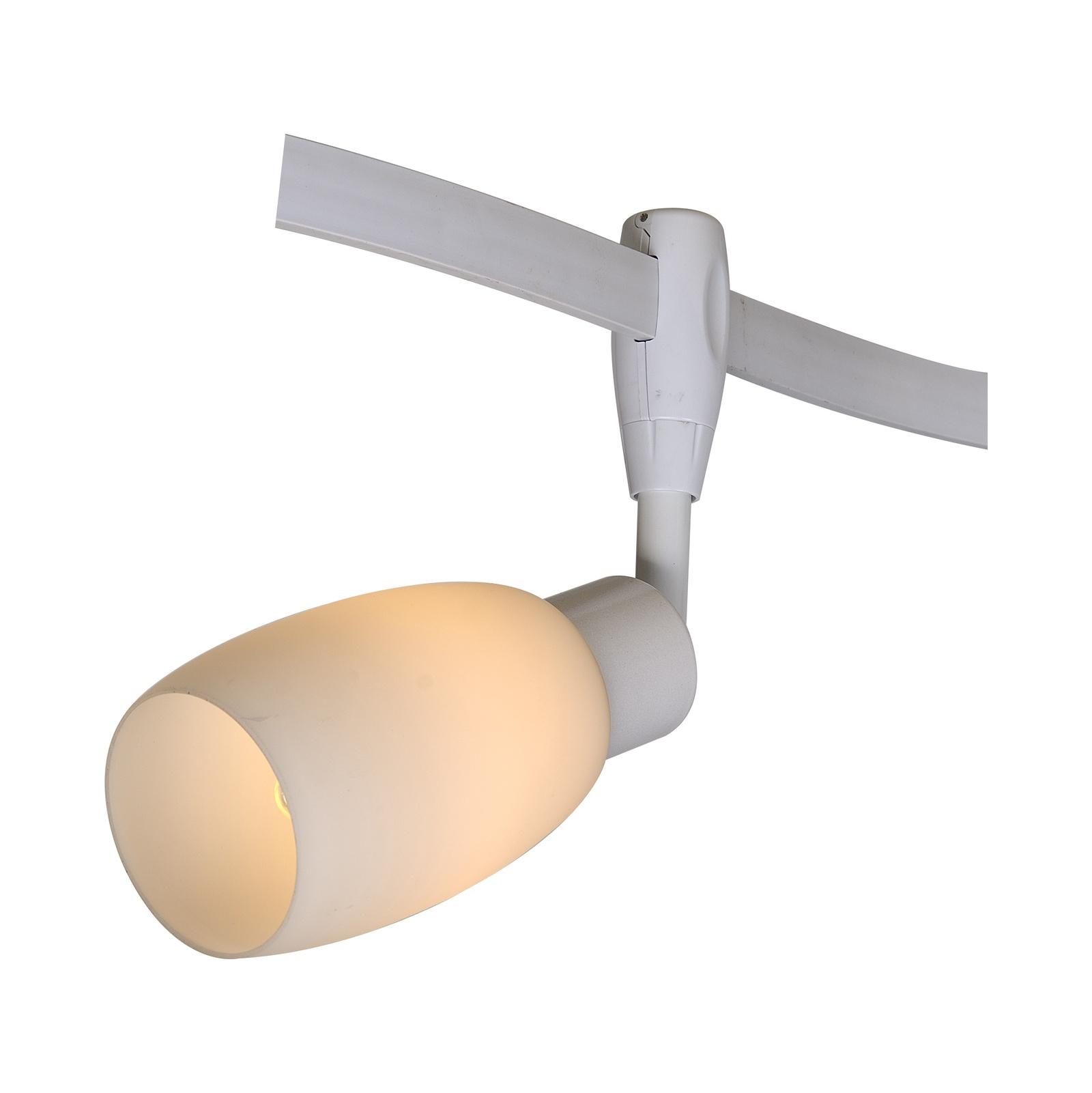 Настенно-потолочный светильник Arte Lamp A3059PL-1WH, E14, 40 Вт