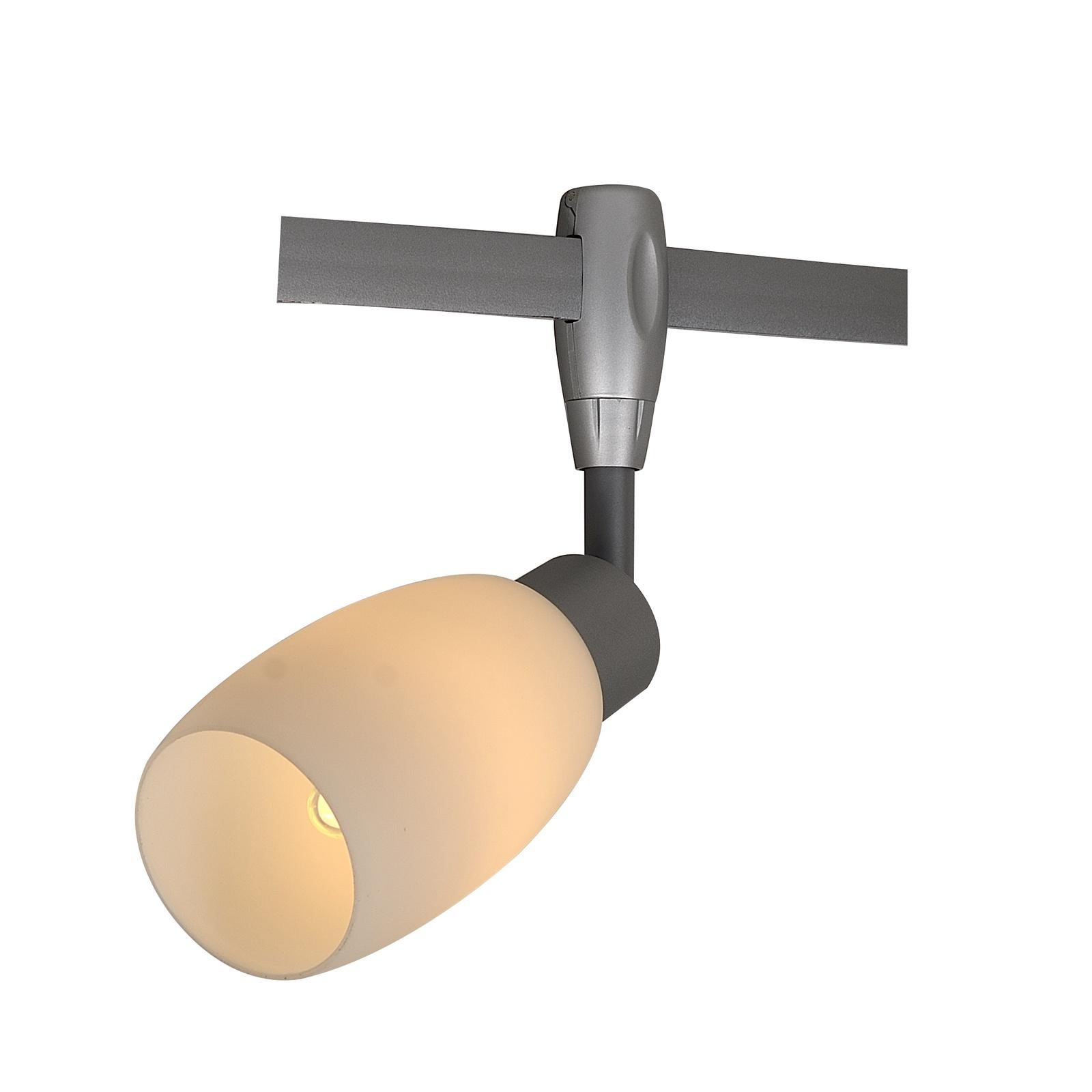 Настенно-потолочный светильник Arte Lamp A3059PL-1SI, E14, 40 Вт