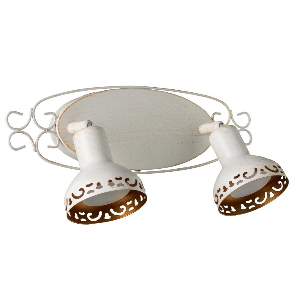 Настенно-потолочный светильник Arte Lamp A5219AP-2WG, золотой спот arte lamp focus brown a5219ap 1br