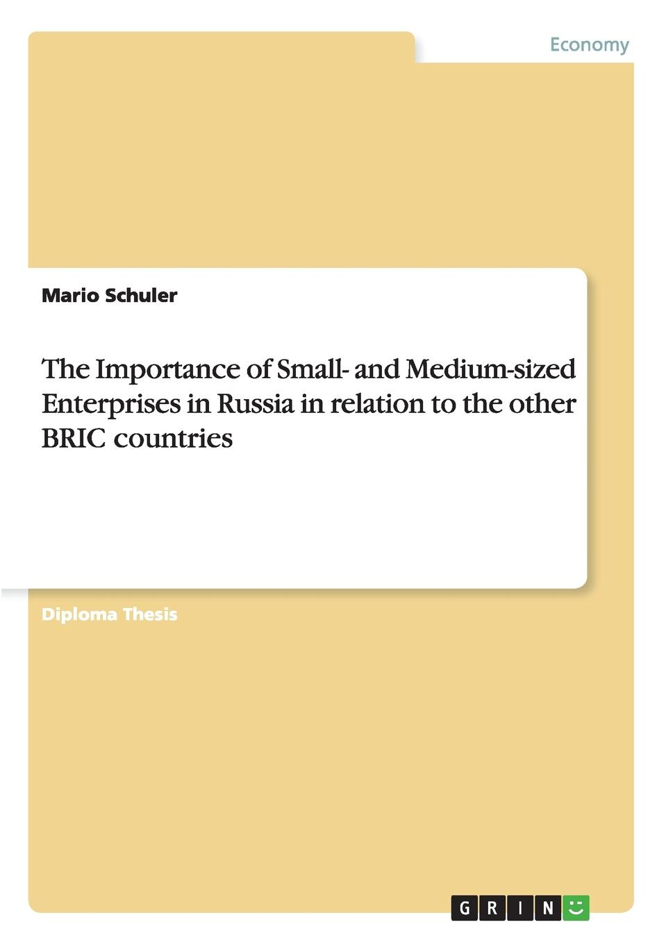 Mario Schuler The Importance of Small- and Medium-sized Enterprises in Russia in relation to the other BRIC countries socio economic determinants of performance of smes