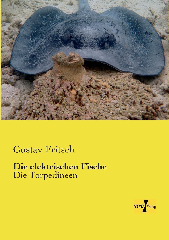 Gustav Fritsch Die Elektrischen Fische h schellen die magnet und dynamo elektrischen maschinen