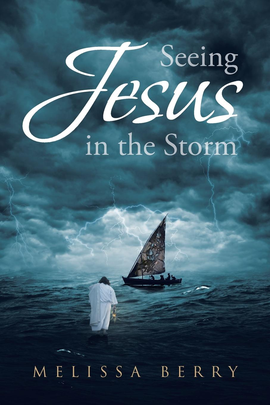 Melissa Berry Seeing Jesus in the Storm rara masterson the storm is over