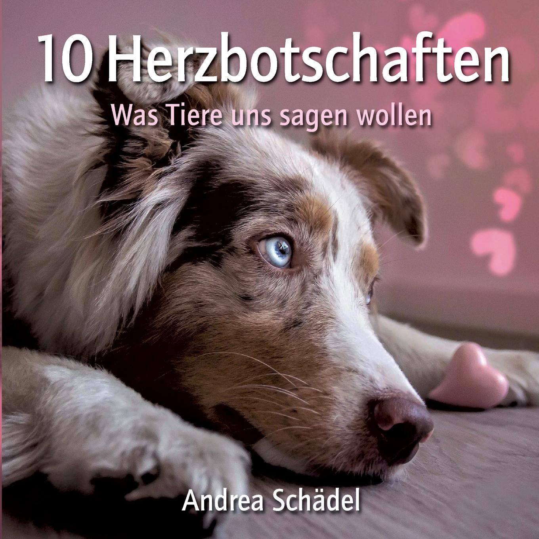 Andrea Schädel 10 Herzbotschaften manije grayli unser leben unsere wahl