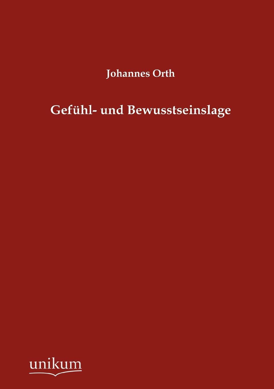 Johannes Orth Gefuhl- und Bewusstseinslage недорого